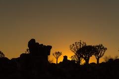 Silhouettes au coucher du soleil des arbres de tremblement et roches chez Garas Images libres de droits