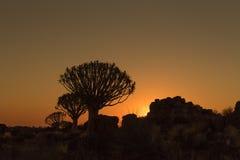 Silhouettes au coucher du soleil des arbres de tremblement et roches chez Garas Photo libre de droits