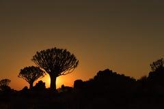 Silhouettes au coucher du soleil des arbres de tremblement et roches chez Garas Image libre de droits