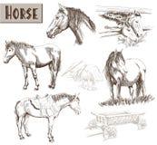 Silhouettes av hästar Fotografering för Bildbyråer