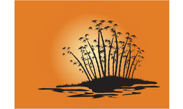 Silhouettes of bamboo trees on the island Stock Photo