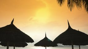 Silhouettes of beach chairs in the evening sky in Vietnam with palm trees. View of umbrellas from a creek on the beach. During sunset stock footage
