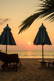 Silhouettes of beach umbrellas sunset and sky Royalty Free Stock Photo