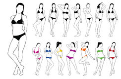 Silhouettes of beautiful girls standing in colored bikini dress. Set silhouettes of beautiful girls standing in colored bikini dress. Vector contour of slim Stock Photo