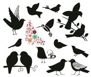 Silhouettes of birds Stock Photo