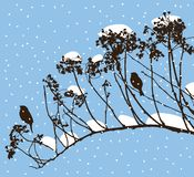 Silhouettes of birds on a branch in a snowy day stock photos