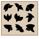 Silhouettes of birds for graphic design vector illustration