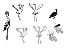 Silhouettes of birds - set - vector Royalty Free Stock Photo