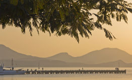 Silhouettes of branches of acacia,mount, pier,boats Stock Photography