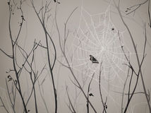 Silhouettes of branches with cobwebs. Spider and butterfly Stock Photography