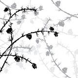 Silhouettes of branches Royalty Free Stock Image