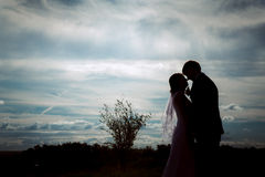 Silhouettes of bride and groom on the background field sky Stock Photos