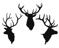 Silhouettes of the buck`s heads. Simple black silhouettes of the buck`s heads on the white background vector illustration