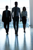 Silhouettes of Business people . Business Team Royalty Free Stock Photo