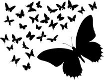 Silhouettes of butterflies. Many silhouettes of different butterflies royalty free illustration