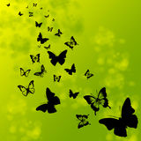 Silhouettes of butterflies. Black silhouettes of butterflies on a summer background stock illustration