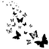 Silhouettes of butterflies. Black silhouettes of butterflies on a white background stock illustration