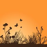 Silhouettes of butterflies and plants on a orange background Stock Photography