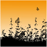 Silhouettes, butterflies Royalty Free Stock Photo