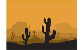 Silhouettes of cactus in desert Royalty Free Stock Images