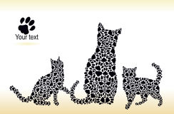 Silhouettes of cat and kittens from the cat tracks Stock Photos