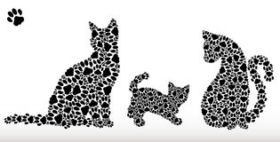 Silhouettes of cats from cat tracks Royalty Free Stock Photos
