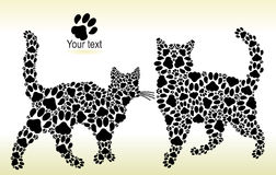 Silhouettes of cats from the cat tracks Royalty Free Stock Photography