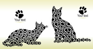 Silhouettes of cats from the cat tracks Stock Photos