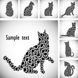 Silhouettes of cats from the cat tracks Royalty Free Stock Images