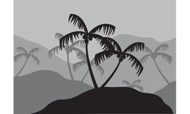 Silhouettes of coconut tree in mountain Stock Photos