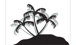 Silhouettes of coconut trees Stock Photography
