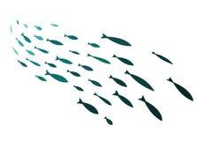 Silhouettes colorées des groupes de poissons de mer Colonie de petits poissons Icône avec des personnes imposant les impôts de ri Photo libre de droits