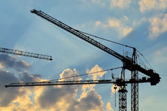 Silhouettes construction cranes Stock Images