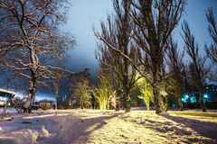 Silhouettes of a couple on  snowy park in the night lights Royalty Free Stock Photo