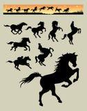Silhouettes courantes 1 de cheval Photos stock
