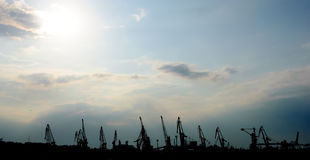Silhouettes of the cranes Royalty Free Stock Images