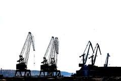 Silhouettes of cranes Stock Photos