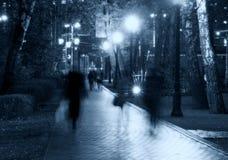 Silhouettes d'allée de nuit de parc Images stock