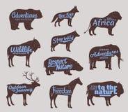Silhouettes d'animaux sauvages de vecteur La vie sauvage risque des icônes illustration de vecteur