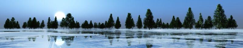 Silhouettes d'arbre Photographie stock