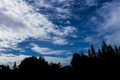 Silhouettes d'arbre contre le beau ciel bleu avec nuageux Images libres de droits