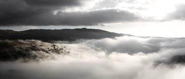 Silhouettes d'arbre en nuage photographie stock