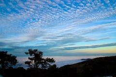 Silhouettes d'arbre sur Troodos Photographie stock