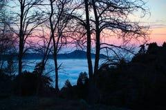 Silhouettes d'arbre sur Troodos 2 Photo libre de droits