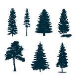 Silhouettes d'arbres Image libre de droits