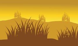 Silhouettes d'herbe Images libres de droits