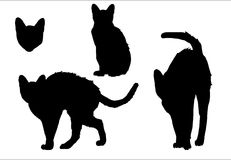 Silhouettes d'isolement de chat Photos stock
