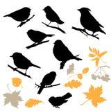 Silhouettes d'oiseaux et de centrales illustration de vecteur