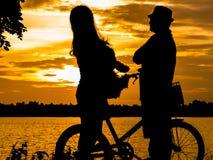 Silhouettes d'une famille heureuse avec des chiens et leurs vélos Au Th Images stock