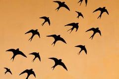 Silhouettes de beaucoup d'hirondelles Images libres de droits